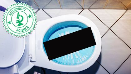 Why Flushing the Toilet With the Lid Up Is Grosser Than You Even Imagined