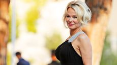 From 'Baywatch' to Bath Watch: Pamela Anderson's Intriguing Malibu Home Is for Rent