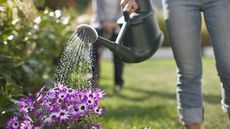 7 Tips To Help Your Gardens Survive (and Thrive) While You're On Vacation