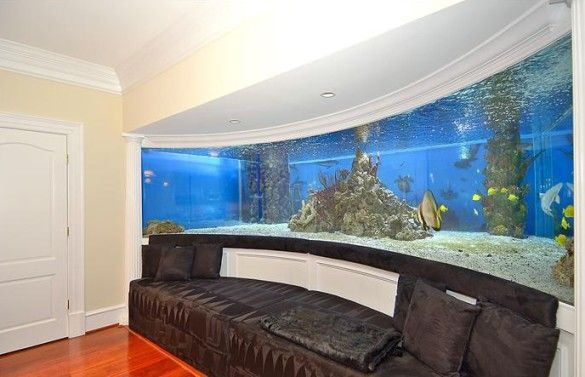 Thorpe Park Shark Hotel Swimming Pool