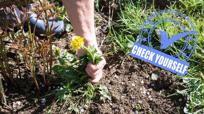 Spring Into Action Now! 7 Home Maintenance Tasks You Should Tackle This Season