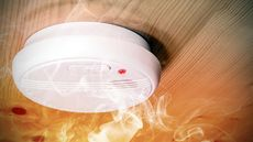 The Best Smoke Detector for a Home, and the Worst: Which Do You Have?