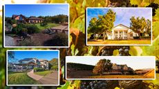 Spring Is for Sipping: 7 Wineries for Sale That Will Fulfill Your Fermented Fantasies