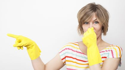 Easy Odor Removal Tactics for a Smelly House