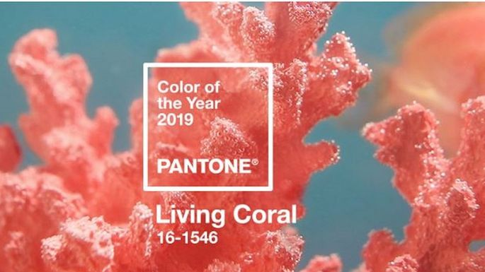 mw coral pantone color