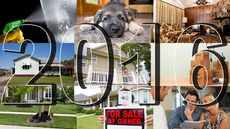 The Best Real Estate Advice You Got in 2016, Decided by You