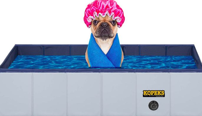 Get your pup paddling in style.