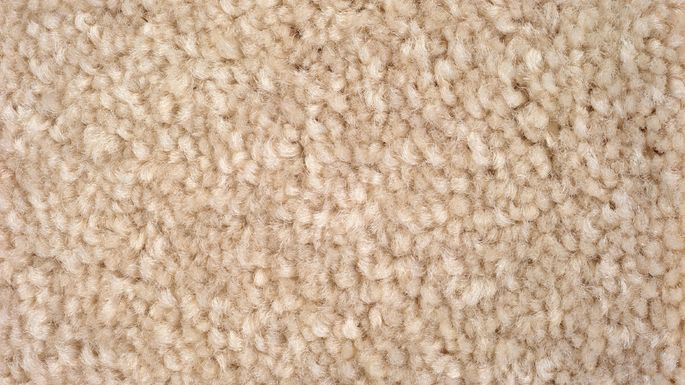 Plush carpeting has a long pile that stands straight up.