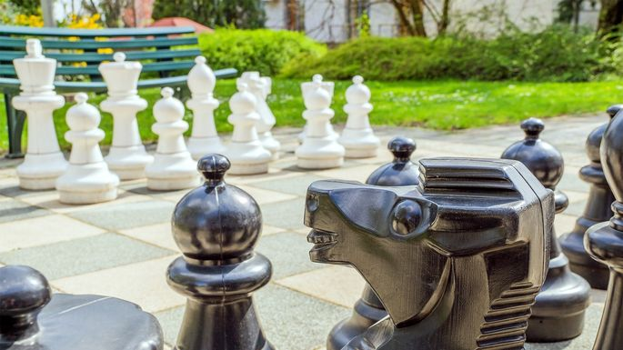 giant-chess-landscaping