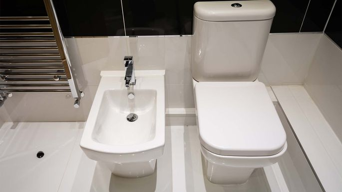 What Is a Bidet  The Shocking Truth About This Exotic Bathroom Upgrade. What Is a Bidet  Pros  Cons  and Cost of This Bathroom Upgrade
