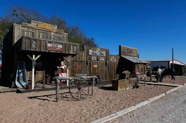 Triple D Ranch in Mt. Calm, TX