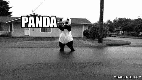 Panda, move!