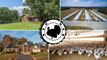 Rule the Roost! 8 Turkey Farms on Sale Just in Time for Thanksgiving