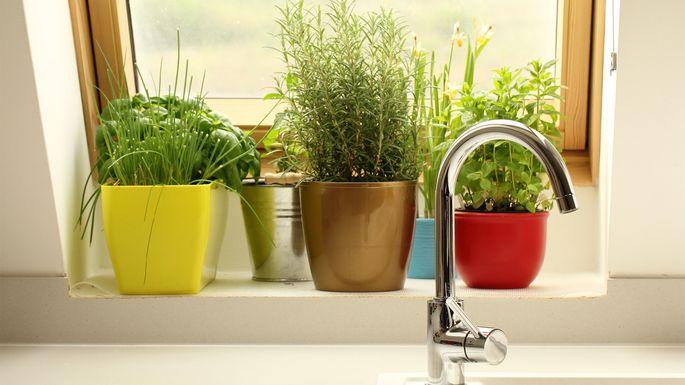 kitchen-herb-pots