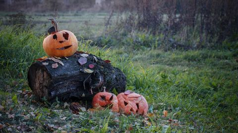 Don't Trash That Gourd! 11 Clever Things You Can Do With Leftover Pumpkins