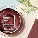 Introducing the Pantone 2015 Color of the Year