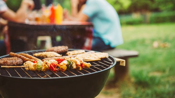 Best Backyard Grill best grill for your home: did you pick right or get burned