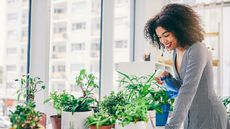 Plant Stylists (Yes, That's a Thing) Reveal Their Top Secrets for Going Green