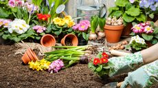 Learning the Lingo: Garden Terms, From Grading to Macronutrients