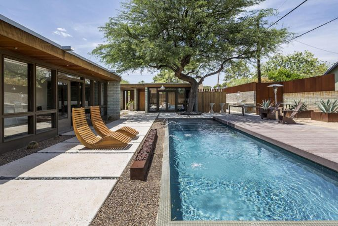 The pool and mesquite tree out back