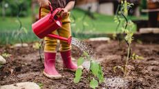 Yard Maintenance Tasks for Children of All Ages, From Youngsters to Young Adults