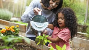 6 Lessons First-Time Gardeners Learned During the Pandemic