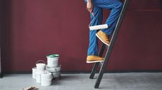 7 Colors Paint Pros Secretly Hate: Is One on Your Walls?