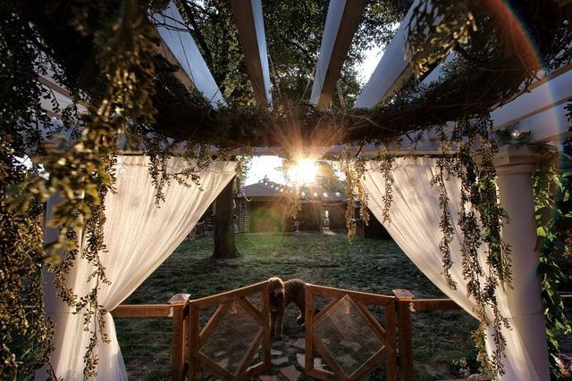 The pergola that served as the altar for the Wickbergs' backyard wedding