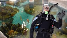 $5.5M Florida Keys Home Features an Aquarium Big Enough for Snorkeling