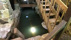 Would You Dare To Swim in This Basement Pool?