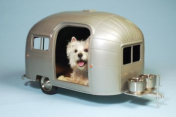 High-Low: Paws to Contemplate These 6 Fabulous Luxury Homes … for Your Dog