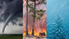 The U.S. Counties Where Natural Disaster Is Most Likely to Strike