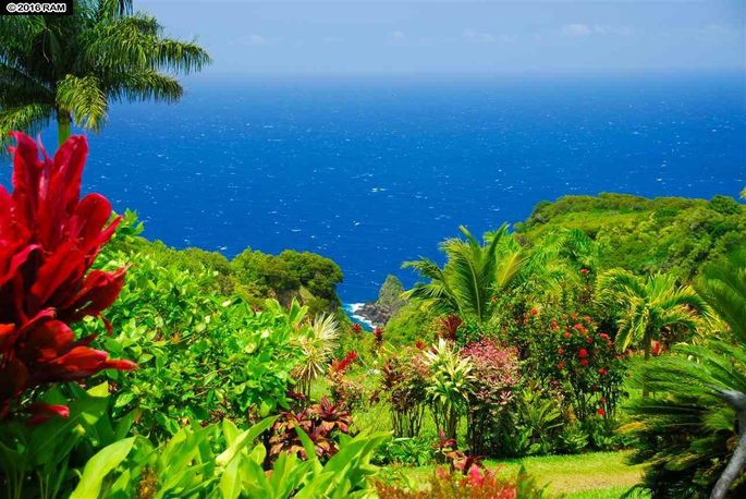 have 20m you can buy the garden of eden in hawaii