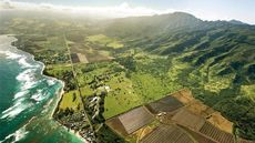 Huge, Historic Oahu Ranch Glimpsed on 'Lost' Available for $45M