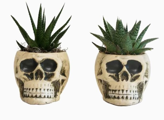 Try these ghoulish plant holders on a mantel.