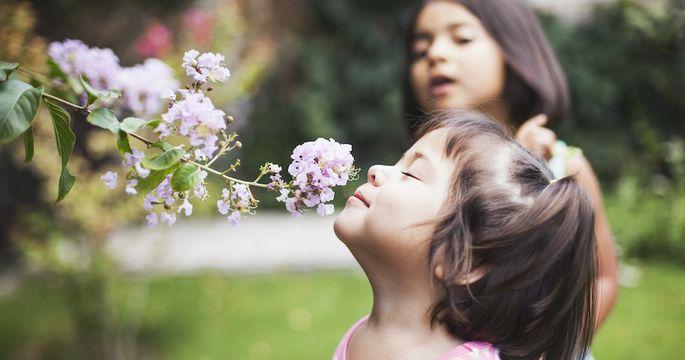 Toddler girl smelling flowers In garden