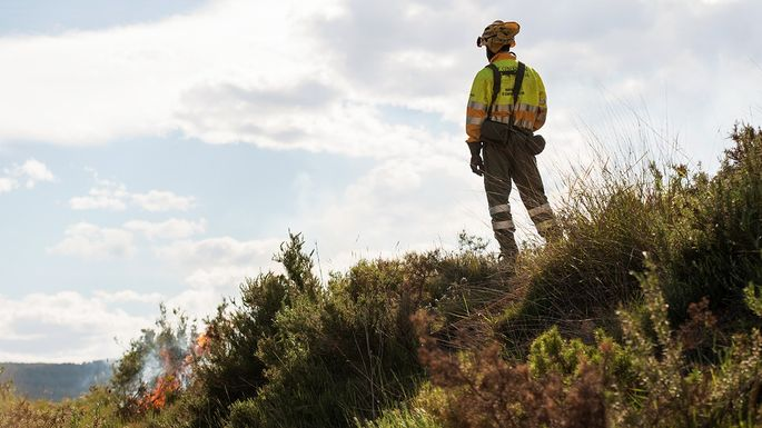 A fire inspector surveys a forest fire  below