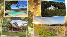 Satisfy Your Cabernet Cravings! 7 West Coast Wineries for Sale
