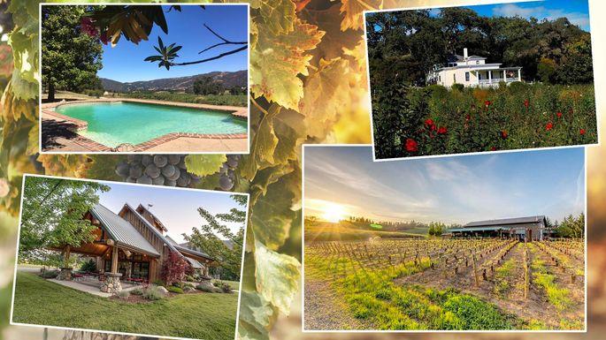 vineyards-for-sale