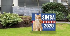 9PresidentialLawnSignsThat'll Make You (and Your Neighbors) Laugh