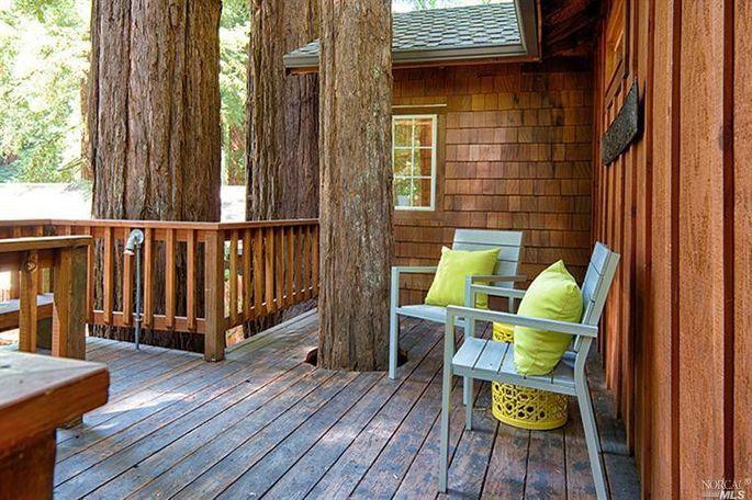 A wraparound deck that wraps around the trees
