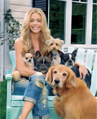 Denise Richards and dogs