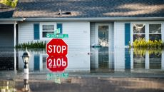 Major Flooding in the South Is a Cautionary Tale for All Homeowners