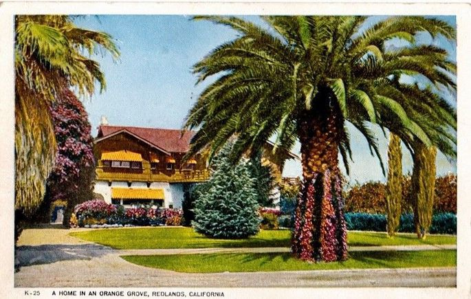Postcard from early last century