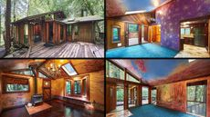 Prolific Painter: Color Runs Rampant at This California Cabin in the Woods