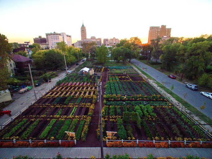 The Michigan Urban Farming Initiative has been credited with helping to revitalize a Detroit neighborhood.