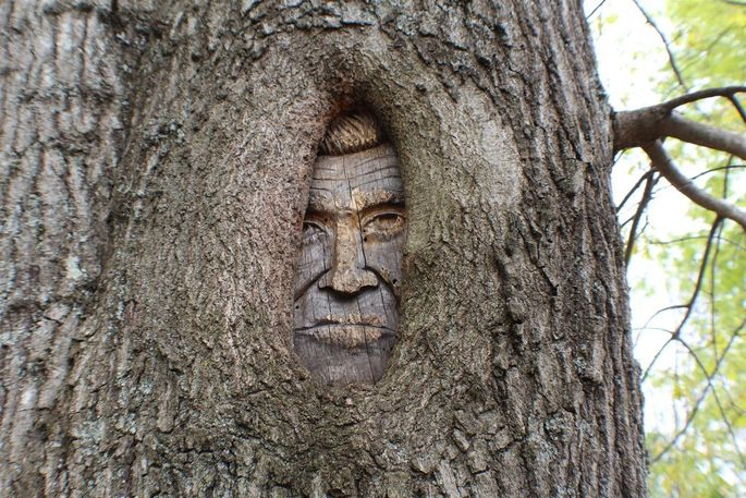 Found him! Johnny Cash's face is carved into a tree on the property.