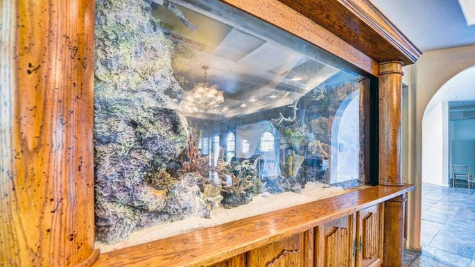A Big Catch This Las Vegas Home Comes With A 40k Fish Tank