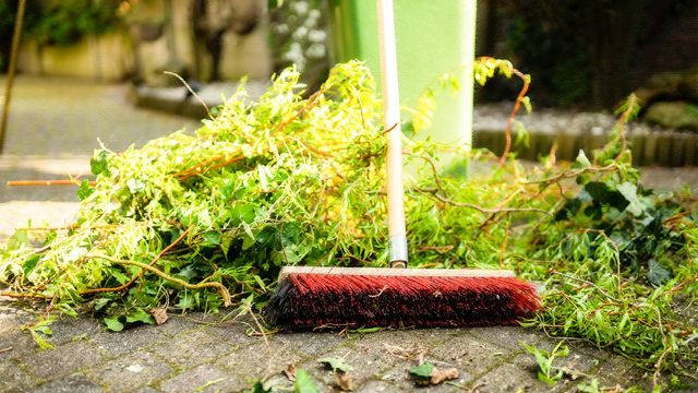 Don't Sweat It! Your Simple Guide to Summer's 8 Most Important Home Maintenance Tasks