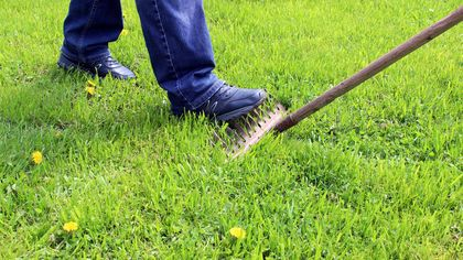 6 Dumb Mistakes Even Pro Gardeners Make—in Their Own Yards